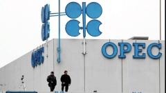 Противоречия в ОПЕК за добива свалят цената на петрола