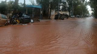 Силен дъжд предизвика внезапни наводнения в централна Гърция