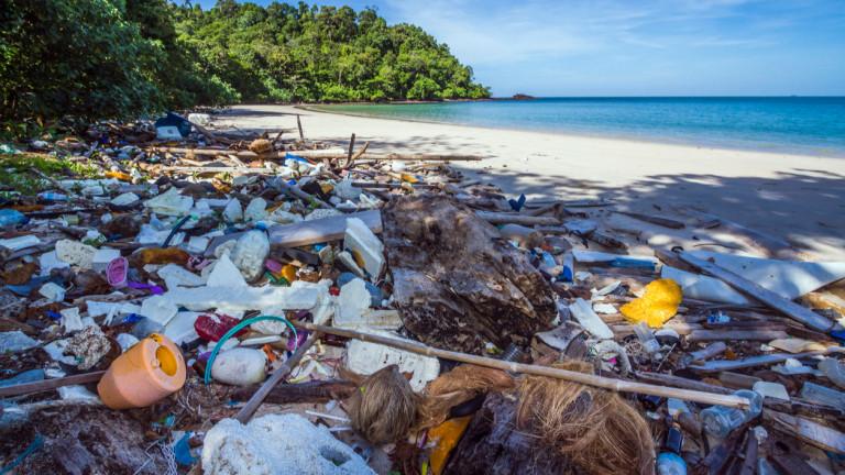 Пластмасите са един от най-големите замърсители на околната среда