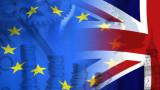 Износът на храни и напитки за ЕС от Великобритания се срина със 75%
