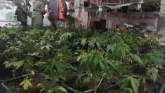 Разкриха нарколаборатория в къщи за гости в Тетевенско