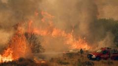 Пожарът в Калифорния взе жертви