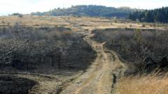 9 пожарни гасят пожар в местността Бонсови поляни край София