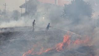Пожарите в южната ни съседка са потушени