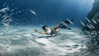 Когато намериш музата си на дъното на океана