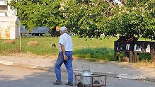 5 общини в Ловешка област обявяват бедствено положение заради сушата