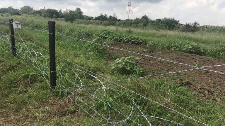 Африканскатa чума по свинете е на 15 км от Силистра