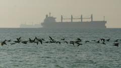 Нападателите напуснаха танкера, отвлечен в Оманския залив