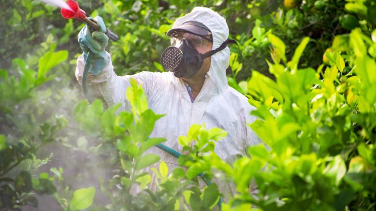 В Швейцария отхвърлиха предложенията за забрана на пестицидите