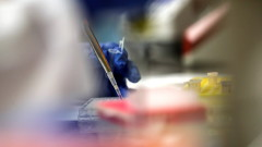 Великобритания си осигури достъп до 90 млн. дози потенциални ваксини против коронавирус