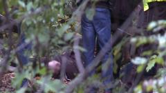 Дърво уби мъж в Борисовата градина