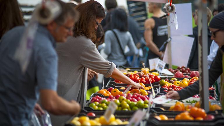 Изместват ли българските плодове и зеленчуци конкурентния внос?