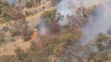 Овладяха пожарите в Рила и Елешница