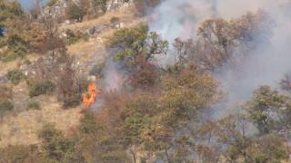 Голям пожар гори край Любимец
