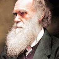 Ватиканът призна теорията на Дарвин