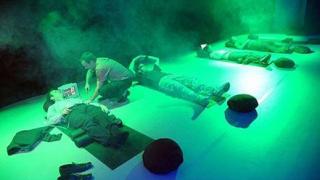 """""""Най-успокояващата стая в света"""" е зелена и мирише на лавандула (галерия)"""