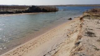 Еколози алармират за драстичен спад на езерата в Шабла и Езерец