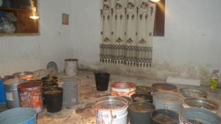 Домашна лаборатория за канабис откриха в Петричко
