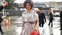 """Певицата, """"облечена"""" в бодлива тел на  наградите Грами"""