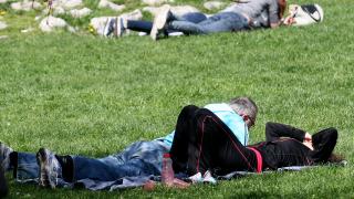 Април и май – най-опасни за ухапвания от кърлежи