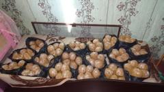 Задържаха 100 кг тютюн във Видин