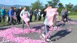 Искаме от ЕК да помогне за небране на розовия цвят