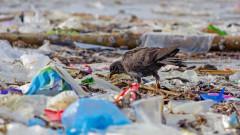 Жители на Лехчево протестират заради италиански боклук