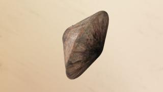 Съдбата на космическия кораб на Марс остава неизвестна