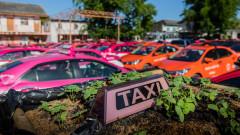Защо такситата в Тайланд се превърнаха в градини