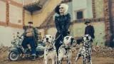 """Cruella, """"101 далматинци"""", Ема Стоун и първи поглед към филма"""