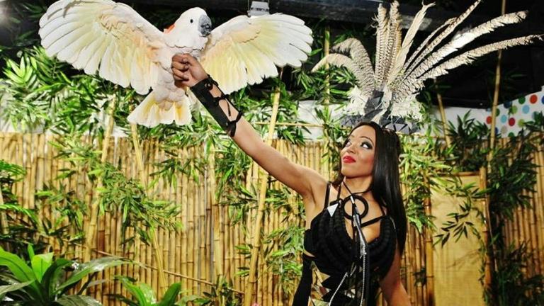 Откриват изложба с папагали в София (СНИМКИ)