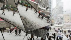 7 души загинаха заради обилните снеговалежи в Япония