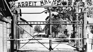 Швеция екстрадира крадеца от Аушвиц