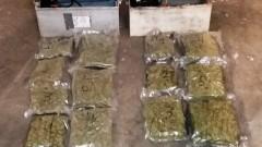 Граничари спипаха двама мъже с 8 400 грама марихуана около Хасково