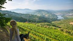 5 идеи за есенни пътувания