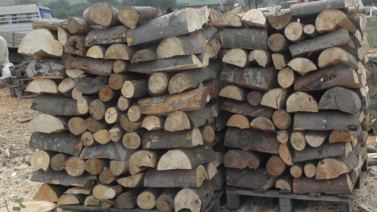 В 7 от 8 склада за дърва в Бургас са изловили нарушения