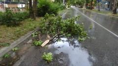 Десетки сигнали за щети след буря в Перник