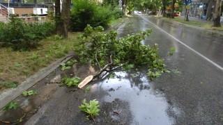 Буря отнесе покриви и изтръгна дървета в Пловдив