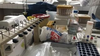 На границата и от българите ще се иска отрицателен PCR-тест
