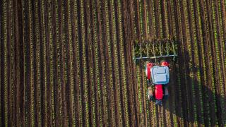 Земеделската земя поскъпнала с 15% за година