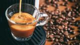 Кафето и кои са най-скъпите видове в света