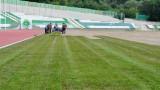 Берое започна полагането на новата трева