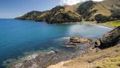 Под Нова Зеландия лежи осмият континент на планетата?