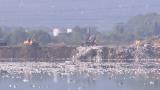 Над 90 тона боклук извадиха от водоем край София