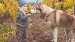 Големите малки плюсове детето да израсне с куче