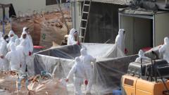 """Увеличаване на птичи грип при хора в Китай - """"вирус, който причинява висока смъртност"""""""