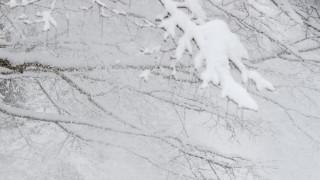 Жълт код за сняг в Западна България