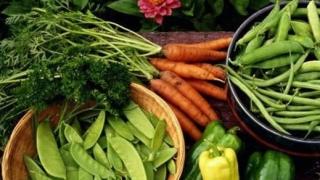 Отбелязваме Европейския ден за здравословно хранене