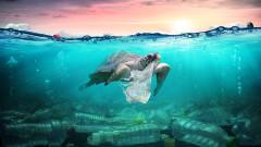 Откриха боклуци на дъното на океана при най-дълбокото спускане в историята