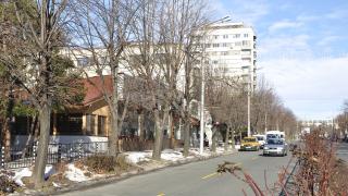 Трима хасковлии в болница със салмонела